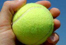 La pallina da tennis